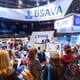 Our top picks for BSAVA Congress thumbnail image