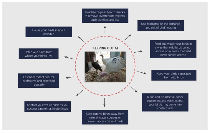 FIGURE (3) Biosecurity is essential for keeping birds safe and well at all times but especially when there is an outbreak of HPAI