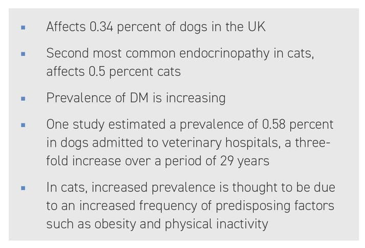 BOX (1) How common is diabetes mellitus in dogs and cats? (Guptil et al., 2003; Prahl et al., 2007; Mattin et al., 2014; O'Neill et al., 2016)