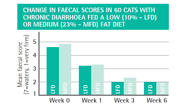 FIGURE (3) Graph to show role of dietary management in cats with chronic diarrhoea. Cats showed improvements in faecal score using a highly digestible low (10 percent dry matter) or medium (23 percent dry matter) fat diet within three weeks. There was no difference in clinical responses between the diets, indicating dietary fat content did not appear to affect the outcome and supporting the role of highly digestible diets in the management of feline chronic diarrhoea (Laflamme et al., 2011; figure adapted from the Purina Pro Plan Veterinary Product Guide)