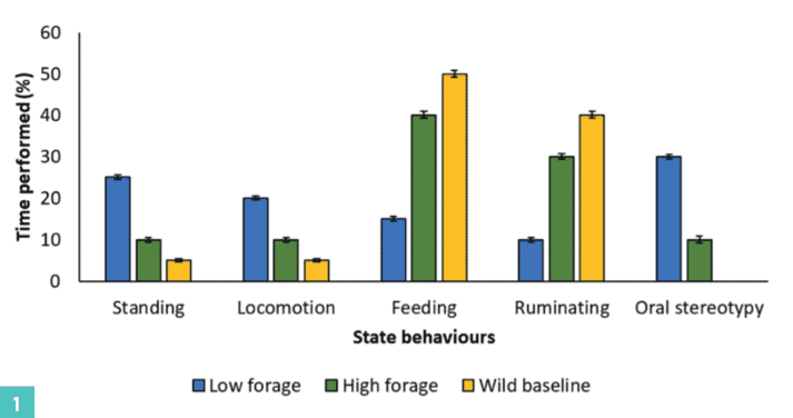 FIGURE (1) An example with fictitious behavioural data showing the mean activity budget of cows fed on a low forage-high concentrate diet (blue bars), cows fed on a high forage-low concentrate diet (green bars) and baseline for wild buffalo (yellow bars)
