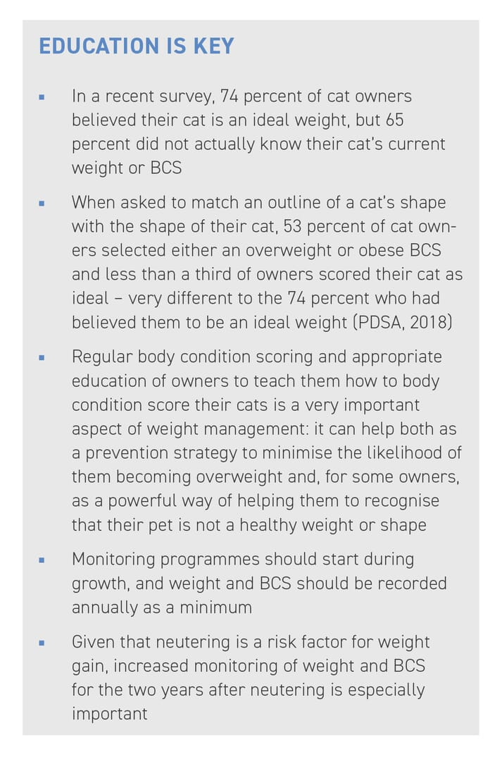 BOX (1) Education of what a healthy cat looks like is important. There is currently a mismatch between the number of cats classified as overweight or obese and the number of owners recognising this