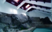 The physiotherapy and hydrotherapy area incorporates a startling natural rock face – part of the original building – with two waterfalls and plants which create a calming atmosphere thumbnail