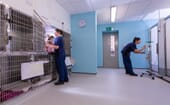 Spacious kennels are available for inpatients thumbnail