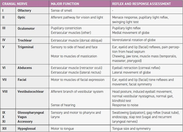 TABLE 1 Cranial nerve reflex and response assessment