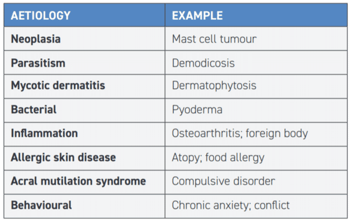 TABLE 1 Differential diagnoses for acral lick dermatitis