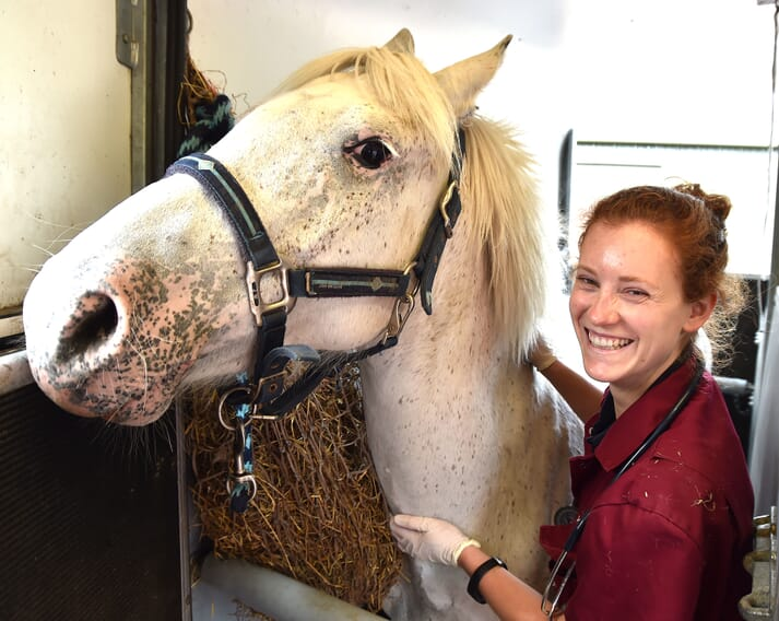 Ludovica was with a client, Louise Dunn, vaccinating her two horses, 9-year-old Sasha and 18-year-old Darcy, for flu and tetanus
