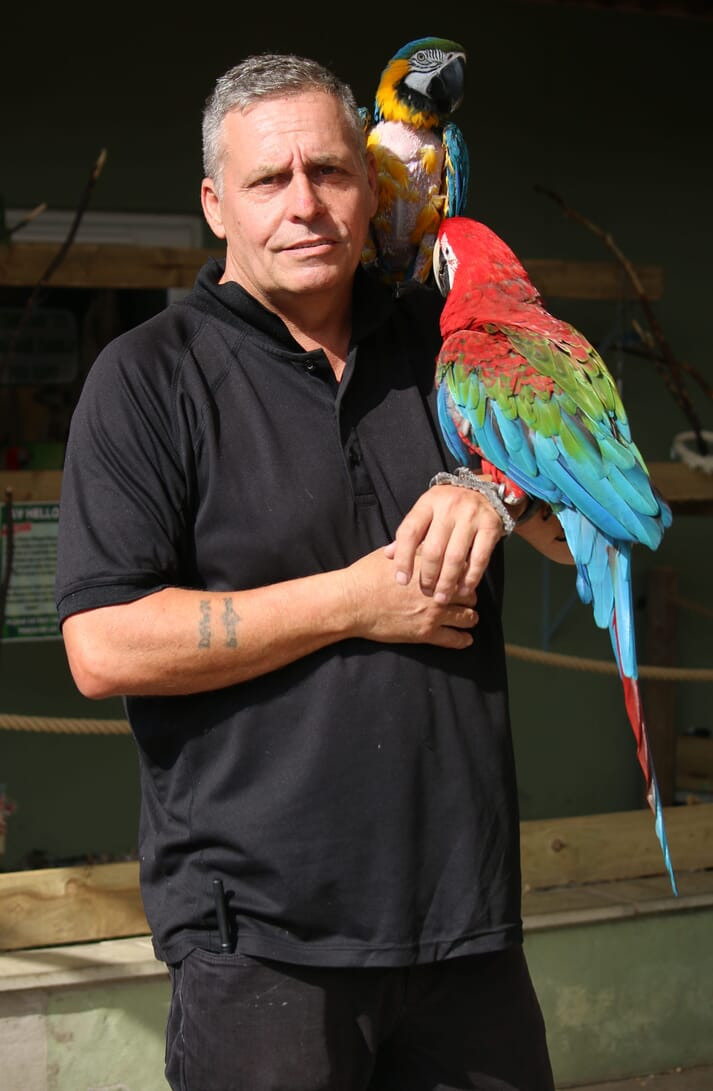 Since adopting a friend's cockatoo, Steve Nichols has been passionate about parrots; he now has over 1,000 birds at the wildlife park