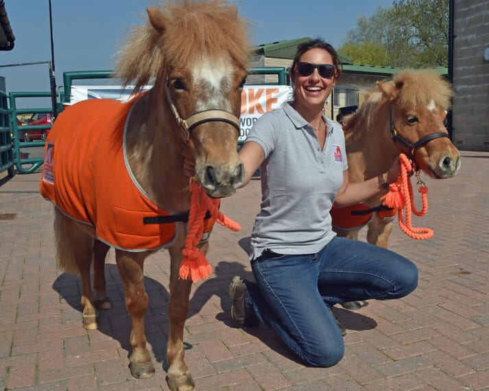 FIGURE 2  The Brooke, which supports conditions for working horses and donkeys, was the chosen charity at the open day
